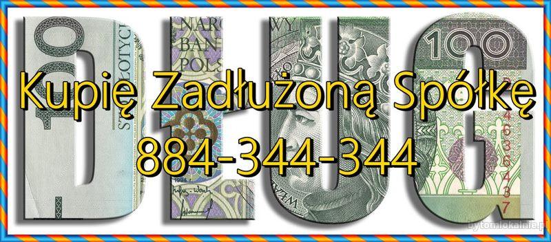 Sprzedaj Nam Zadłużoną Spółkę - Ochrona Zarządu 299 K.s.h. KAS/ZUS/UKS